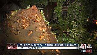 Four-story tree falls on family's home - Video