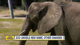 Lowry Park Zoo announces name change and new additions - Video