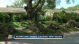 Irma debris causing allergies, eye injuries - Video