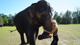 This Woman Has An Elephant For A Best Friend And Their Bond Is Unbreakable  - Video