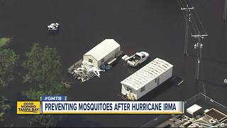 Preventing mosquitoes after Hurricane Irma - Video