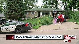 10 year-old girl attacked by family dog - Video