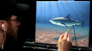 Acrylic Wildlife Painting of a Shark - Time Lapse - Artist Timothy Stanford