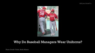 Why Do Baseball Managers Wear Uniforms? - Video