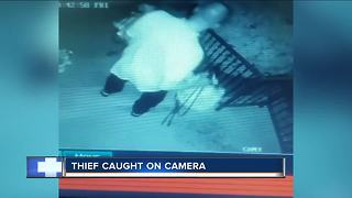 Milwaukee woman wants flower pot thief identified - Video