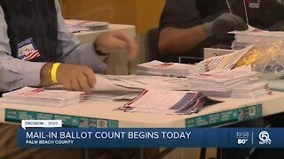 Palm Beach County begins counting mail-in ballots