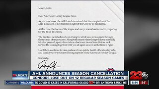 AHL officially cancels the 2019-20 season