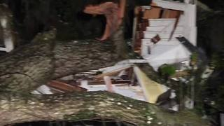 Digital Short: Storm topples tree, destroys home in Citrus County - Video