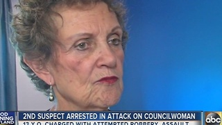 2nd suspect arrested in attack on Councilwoman Spector - Video