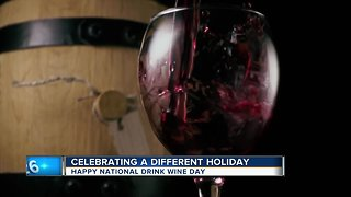 Moose on the loose and National drink wine day - Video