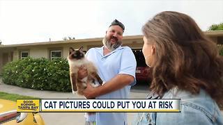 Invasion of Privacy: Your home address found through photos of your cat - Video