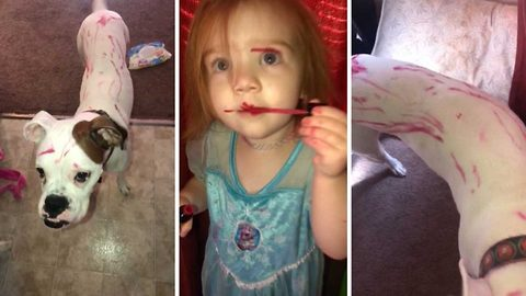 Caught red lipped: Mischievous toddler covers herself and beloved dog in lip gloss