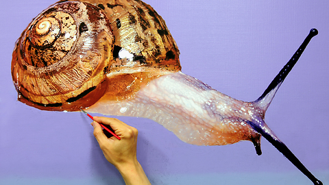Talented artist creates breathtaking snail portrait