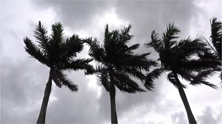 Tropical Storm Gonzalo Picks Up Speed And Strength