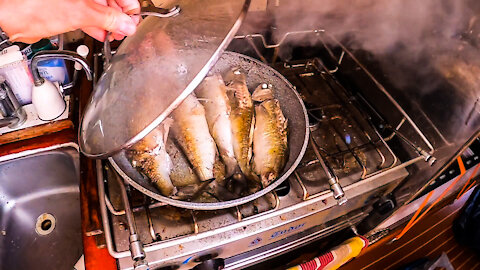 whole fish cook up, survival ep 03