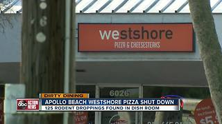 Dirty Dining: Westshore Pizza shut down after the state finds 125 rodent droppings in the kitchen - Video