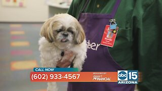 Help keep Animal-assisted Therapy going at Phoenix Children's