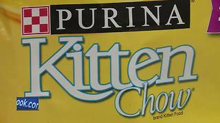 Purina to match donations made to Paw Away Hunger drive in September - Video