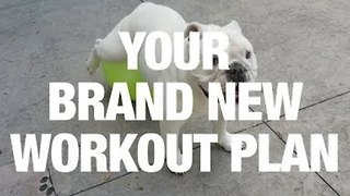 Guaranteed: Your New Workout Plan - Video