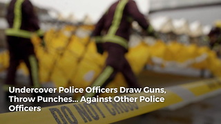 Undercover Police Officers Draw Guns, Throw Punches... Against Other Police Officers - Video