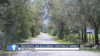 Manatee County teen shooting at animals in trash, accidentally kills himself - Video