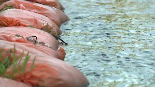 Flooding concerns in Hobe Sound after days of rain