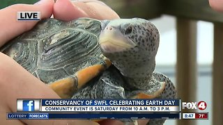 Conservancy of Southwest Florida holds Earth Day Festival on Saturday