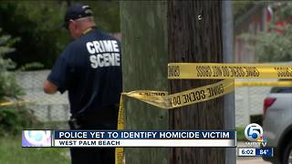 West Palm Beach Police investigating overnight homicide - Video