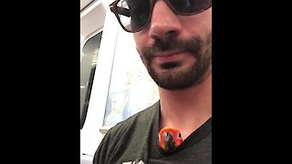 Parrot chills inside owner's shirt during subway ride