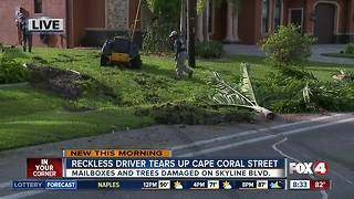 Reckless driver tears up Cape Coral neighborhood