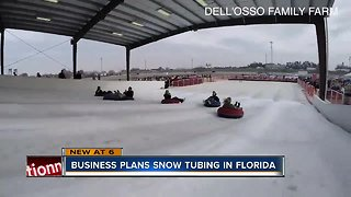 A local company hopes to build Florida's first snow park - Video