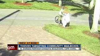 Bicyclists caught on camera opening mailboxes - Video