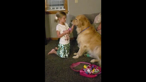 Little girl plays animal doctor with her Golden Retriever