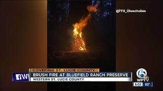 Wildfire closes Bluefield Preserve in St. Lucie County - Video