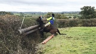 It's neigh from me! Horse refuses to jump hedge - Video