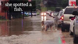 During historic flooding keep calm and pick up a fish! - Video
