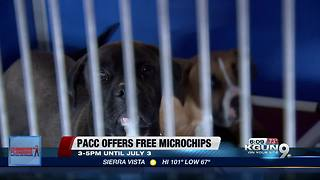 Free pet microchipping ahead of the Fourth of July - Video