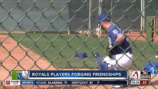 Former minor leaguers look for major opportunity - Video
