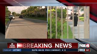 Bear spotted in Fort Myers Monday morning