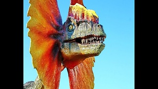 10 Things You Didn't Know About Dinosaurs - Video