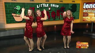 Little Shop of Horrors - Video