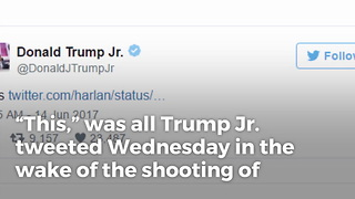Donald Trump Jr. Makes Simple Statement Against Glorifying Violence - Video