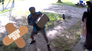 Amazon Delivery Driver Scared Of Still Halloween Decoration - DoctorViral