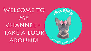 Welcome to the Miss Ruby Show!