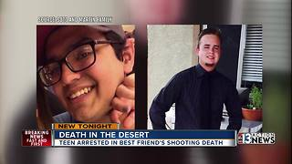 Family: Victim accidentally shot and killed in desert - Video