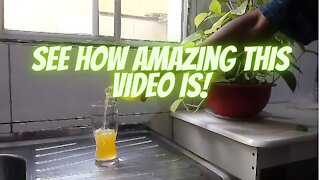 See how incredible this video is!