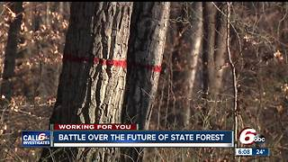 Save Yellow Wood signs highlight battle over the future of Morgan-Monroe State Forest - Video