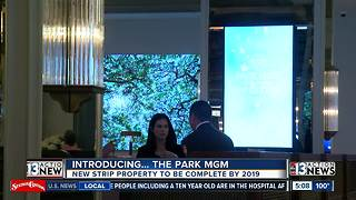 Monte Carlo officially renamed Park MGM - Video
