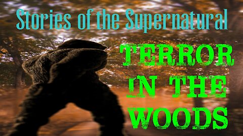Terror in the Woods | Interview with WJ Sheehan | Stories of the Supernatural