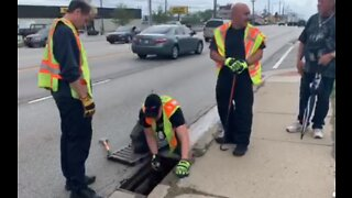 Indianapolis Firefighters Rescue Ducklings From Storm Drain